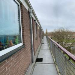 Appartement - huren - Maassingel Den Bosch