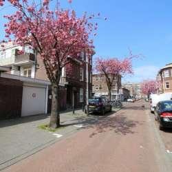 Studio - huren - Van den Berghstraat Den Haag