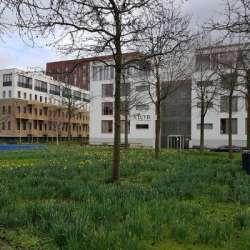 Appartement - huren - Naritaweg Amsterdam
