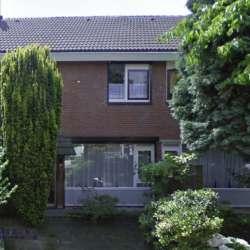 Kamer - huren - Meijhorst Nijmegen
