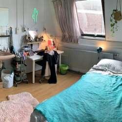 Kamer - huren - Trouwlaan Tilburg