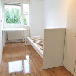Appartement - huren - Steltloperstraat Delft