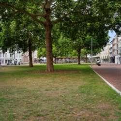 Appartement - huren - Looierstraat Arnhem