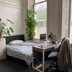 Appartement - huren - Velperbinnensingel Arnhem