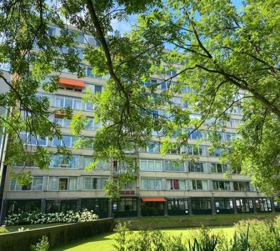 Foto #42541701-0d16-4774-8df0-0049421a2cb5 Appartement Bachstraat Leiden