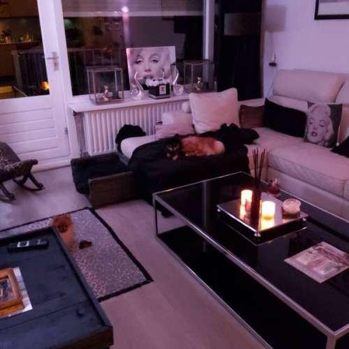 Foto #b3a7f62a-b98a-4aff-beef-93f7587a6ee4 Appartement Drieschstraat Heerlen