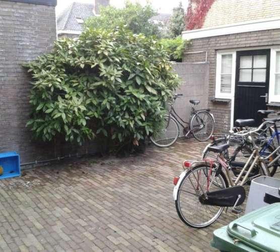 Foto #32e97cba-c89e-43f3-8def-16b78bd139ec Kamer Silenenstraat Den Bosch