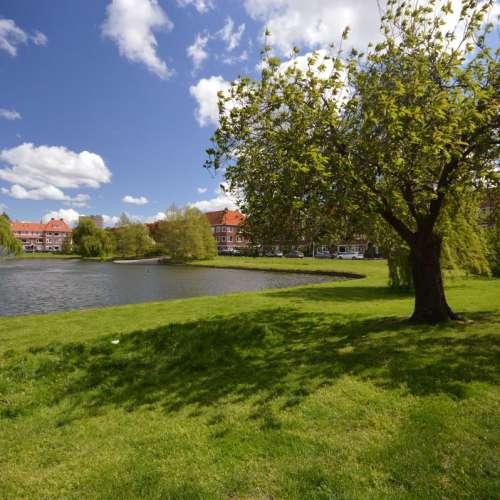 Foto #a2e40030-bfde-4259-ab09-5838ae0d1d66 Kamer Kortenaerstraat Groningen