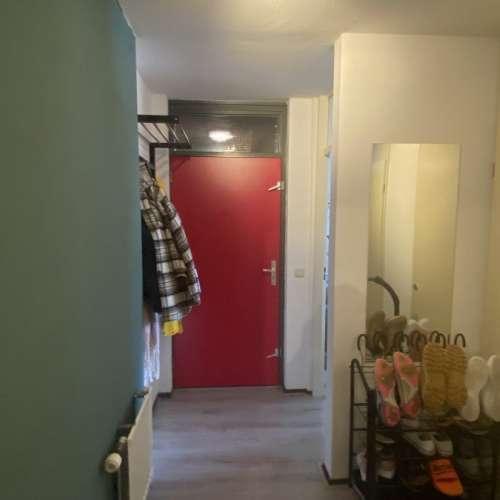 Foto #6a258e7b-5eeb-4d65-bf5a-7c63916afa24 Appartement Amnestylaan Middelburg