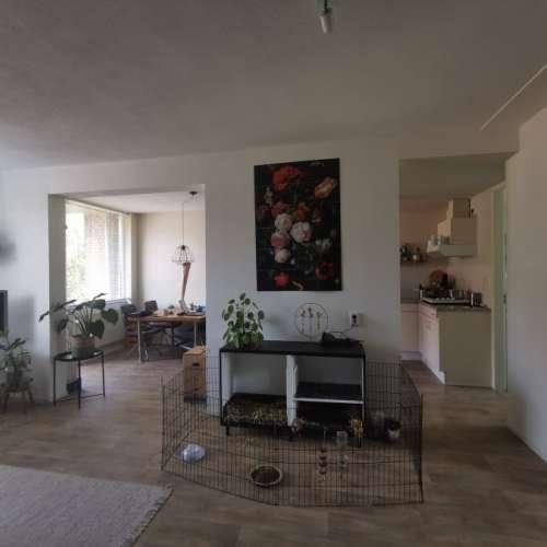 Foto #8b76f5e7-f914-4d64-92fa-5d251f1df525 Appartement Tjongerstraat Dordrecht