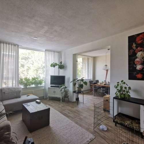 Foto #2fcf6037-eba7-45f2-bca0-656e1d306b8b Appartement Tjongerstraat Dordrecht