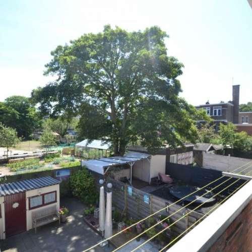 Foto #1570ca95-0ce6-4c91-a284-0925bc339f74 Appartement Okkernootstraat Den Haag