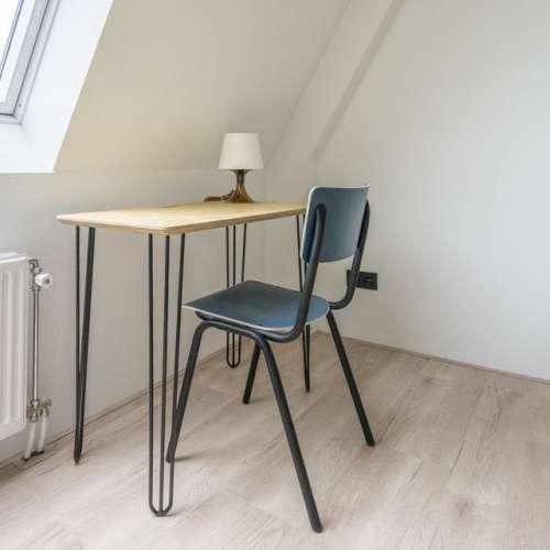 Foto #c85788d7-d8c8-471d-9d1e-91bb9ac31dbd Appartement Eisenhowerlaan Den Haag