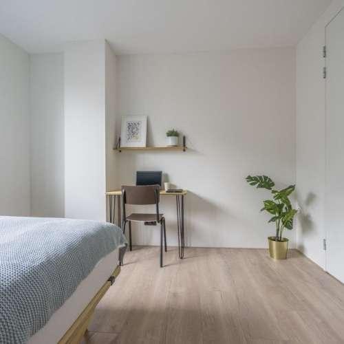 Foto #0eace110-da07-42bb-b2e8-93d219276fd4 Appartement Eisenhowerlaan Den Haag