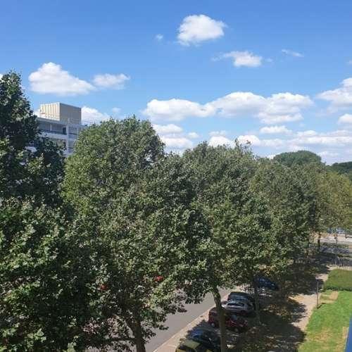 Foto #cbbb936a-c69b-4c9f-ab85-06c7f861f2e7 Kamer Hisveltplein Arnhem