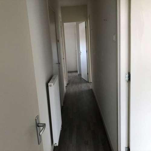Foto #4294ad7e-1522-4a4f-9150-f8361804fc0f Appartement Grieksestraat Rotterdam