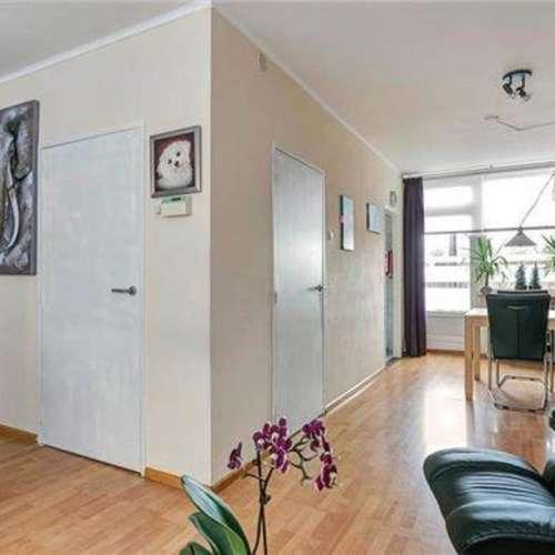 Foto #3d3a10ed-787a-42f1-b10a-7e6098793bb2 Appartement Everjachtstraat Tilburg