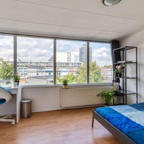 Foto #da9dba28-5871-4486-832a-9513176f7785 Appartement De Houtmanstraat Arnhem